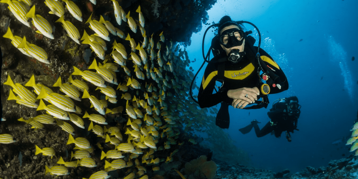 Jobs you can do while traveling Scuba Diving instructor